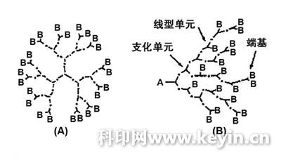 树枝形和超支化聚合物具有如下结构特点